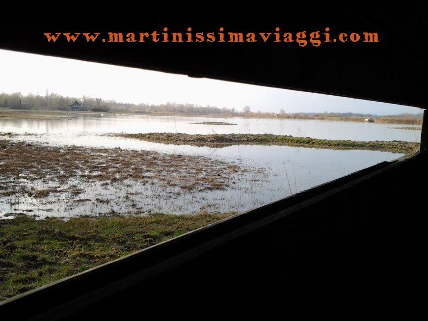 isola lacona birdwatching